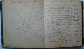 geschaeftsbuch_1897